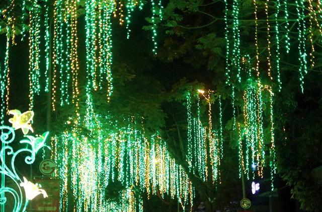 Đường phố Sài Gòn lung linh huyền ảo trong những ngày cuối năm - Ảnh 10.