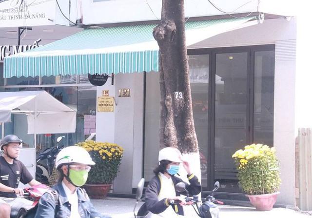 Cận cảnh những khu đất vàng TTCP vừa kết luận sai phạm ở Đà Nẵng - Ảnh 10.