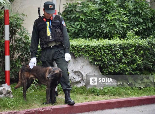 [Ảnh] 3 chú khuyển đặc biệt kiểm tra khách sạn Melia trước ngày Chủ tịch Kim Jong-Un đến Việt Nam - Ảnh 11.