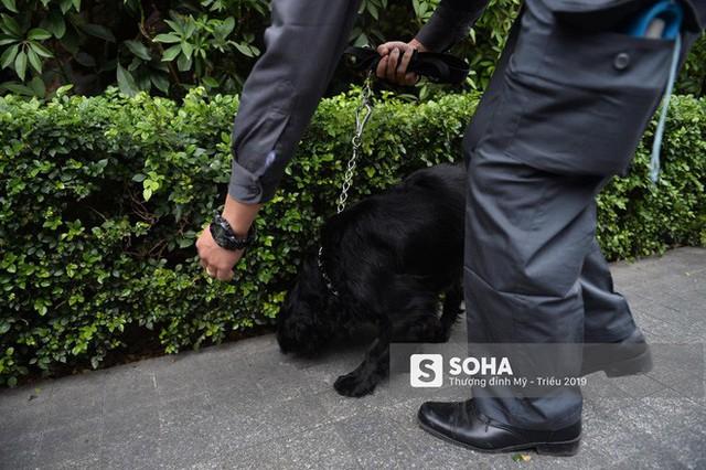 [Ảnh] 3 chú khuyển đặc biệt kiểm tra khách sạn Melia trước ngày Chủ tịch Kim Jong-Un đến Việt Nam - Ảnh 12.