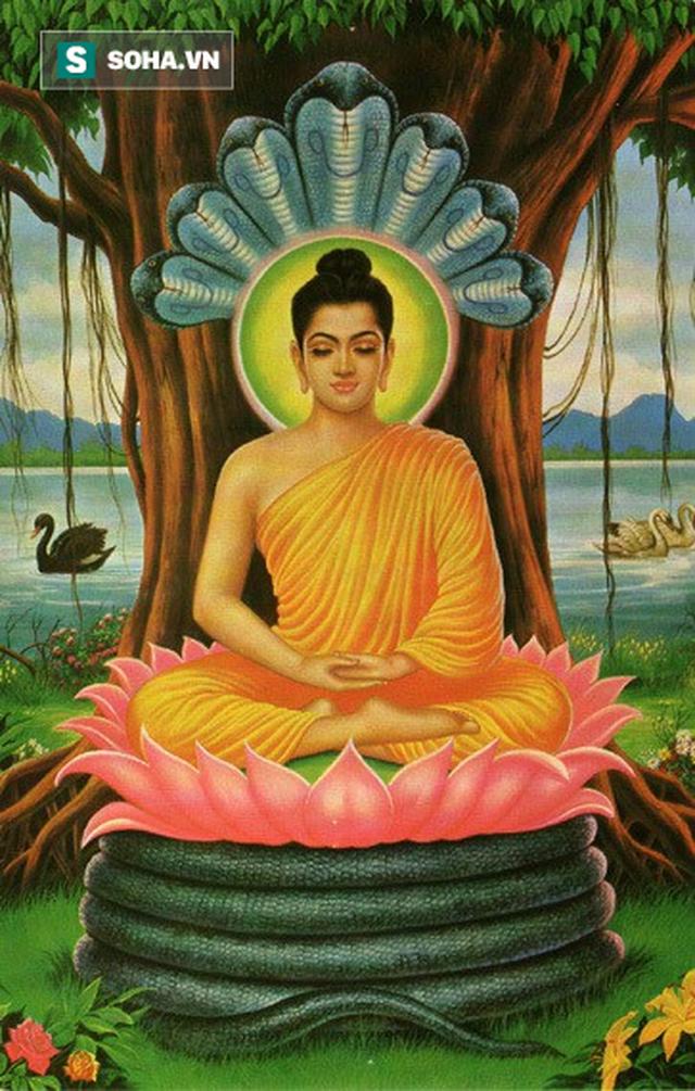Phật nói ai cũng có 4 người bạn đời, người thứ 4 quan trọng nhất nhưng thường bị bỏ bê - Ảnh 1.