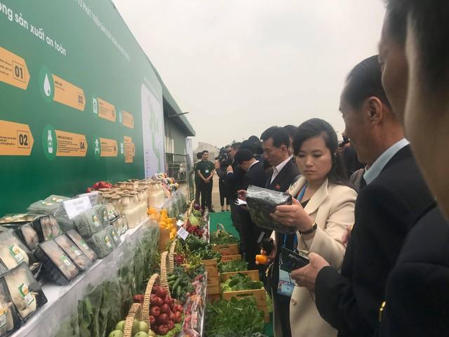 Cận cảnh phái đoàn Triều Tiên đến thăm nhà máy sản xuất VinFast và VinEco - Ảnh 7.