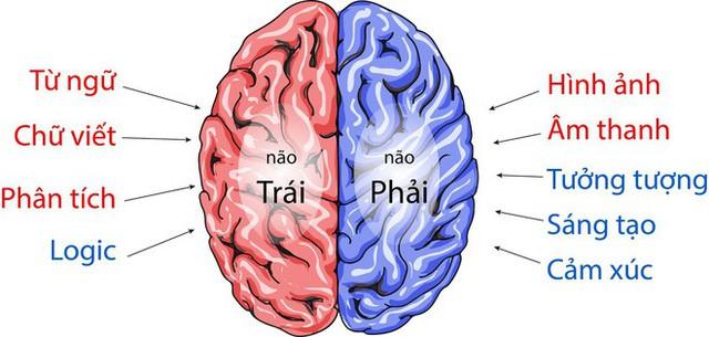 Chỉ cần có 6 thói quen tốt này, não ngày càng trẻ: Người lao động trí óc nên áp dụng sớm - Ảnh 2.