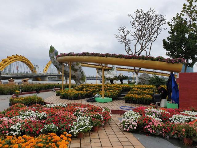 Cầu Vàng đọ dáng cầu Rồng ở đường hoa bên bờ sông Hàn - Ảnh 2.