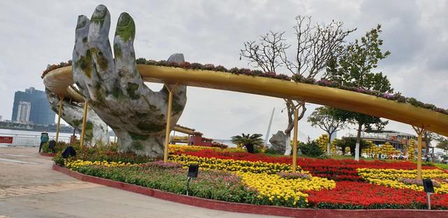 Cầu Vàng đọ dáng cầu Rồng ở đường hoa bên bờ sông Hàn - Ảnh 3.