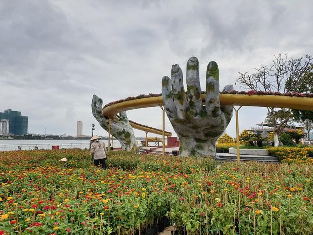 Cầu Vàng đọ dáng cầu Rồng ở đường hoa bên bờ sông Hàn - Ảnh 5.