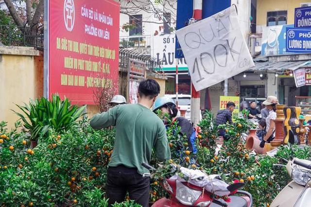 Quất, đào đại hạ giá tràn ngập phố Hà Nội ngày 30 Tết - Ảnh 4.