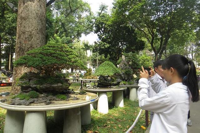 Đi chơi tết, dân Sài Gòn thích thú ngắm kỳ hoa dị thảo - Ảnh 20.
