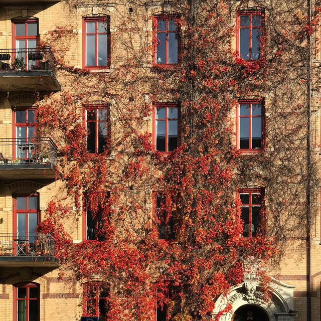 Tròn mắt với loạt kiến trúc độc đáo ở Gothenburg - Thuỵ Điển: Góc nào cũng bình yên và đẹp tuyệt! - Ảnh 7.