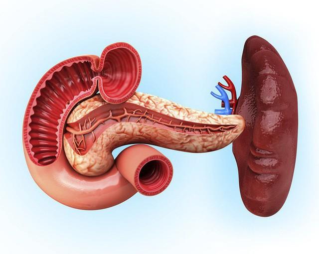 Ai quan tâm đến sức khoẻ tim, gan, phổi, thận cần phải biết điều này - Ảnh 8.