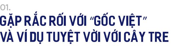 Nguyên Phó Thủ tướng Đức Philipp Rosler và hình tượng cây tre khi trở thành Chủ tịch Đảng Dân chủ Tự do - Ảnh 1.