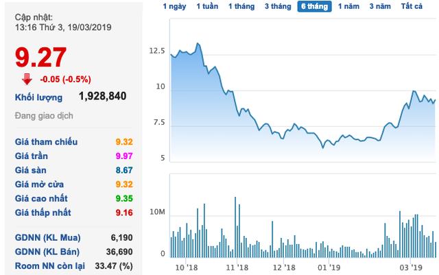 Hoa Sen Group (HSG) muốn huy động thêm 1.000 tỷ trái phiếu chuyển đổi - Ảnh 1.