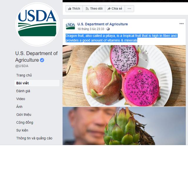 Bộ Nông nghiệp Mỹ ca ngợi quả thanh long: Người Việt ăn suốt nhưng chưa chắc đã biết - Ảnh 1.