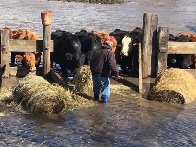 Lũ lụt lịch sử ở Mỹ khiến 74 thành phố phải ban bố tình trạng khẩn cấp - Ảnh 8.