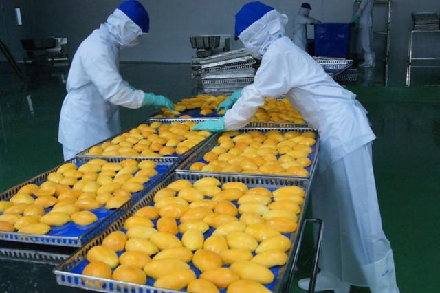Làn sóng cải cách nông nghiệp phát triển mạnh nhờ CPTPP - Ảnh 1.