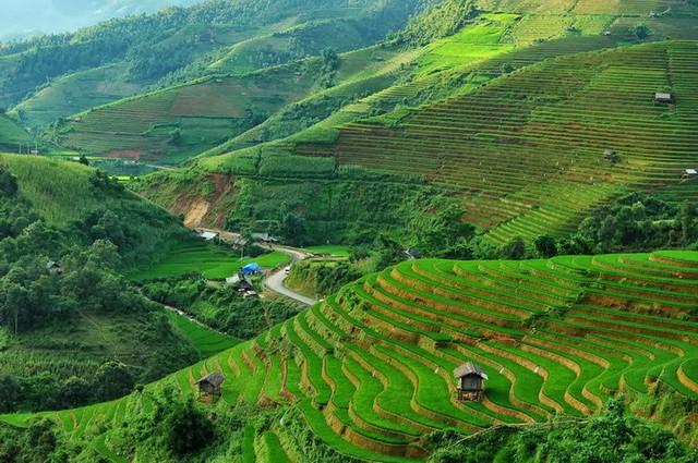 Báo cáo của HSBC chỉ ra 8 lý do khiến Việt Nam là một trong những nơi tuyệt vời nhất cho người nước ngoài sống ở châu Á - Ảnh 3.