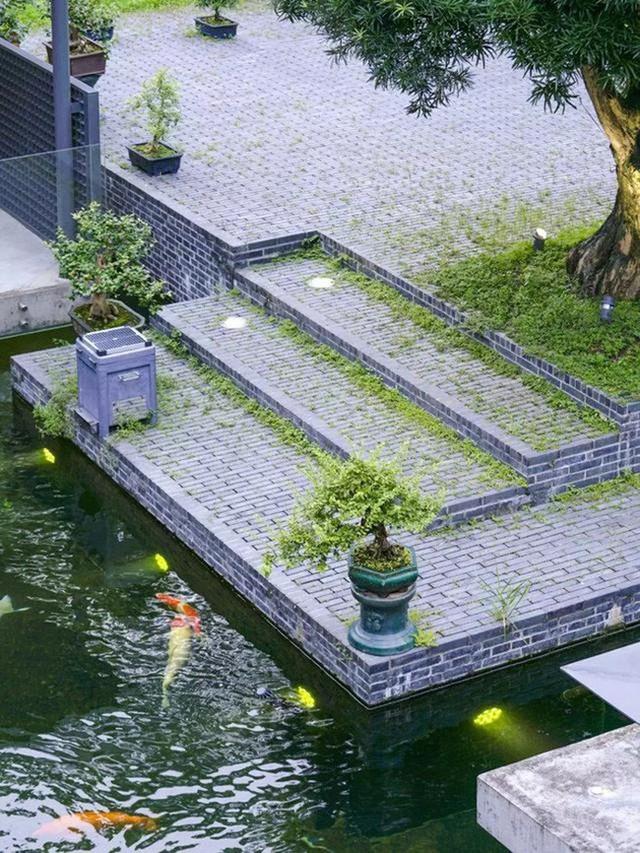 Cuộc sống an yên của người đàn ông độc thân trong ngôi nhà ngoại ô rộng 1000m² với thú vui uống trà, nuôi cá - Ảnh 11.