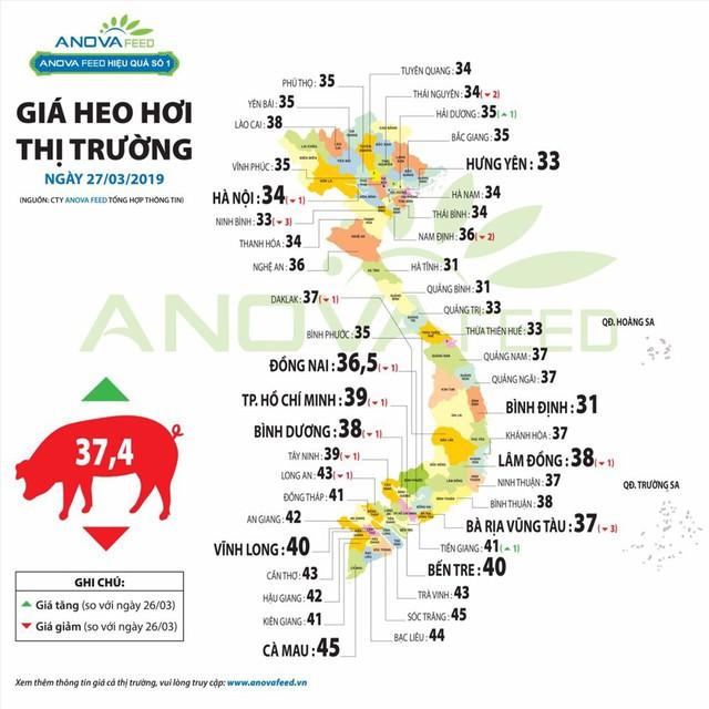 Dù 23 tỉnh bị dịch tả lợn Châu Phi, giá lợn hơi đang ấm dần - Ảnh 3.