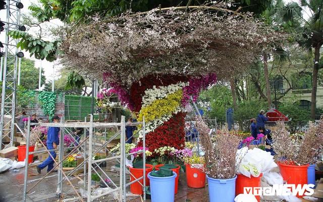 Ảnh: 40.000 cành hoa anh đào chuyển từ Nhật Bản tới Hà Nội - Ảnh 8.