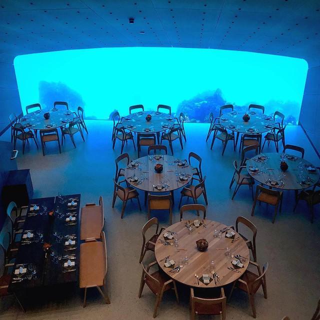 Nhà hàng dưới nước đầu tiên tại châu Âu gây sốt trên toàn thế giới: Đầu tháng 4 mới khai trương nhưng đã kín lịch đặt chỗ đến tận tháng 9 - Ảnh 23.