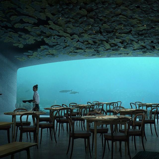 Nhà hàng dưới nước đầu tiên tại châu Âu gây sốt trên toàn thế giới: Đầu tháng 4 mới khai trương nhưng đã kín lịch đặt chỗ đến tận tháng 9 - Ảnh 7.
