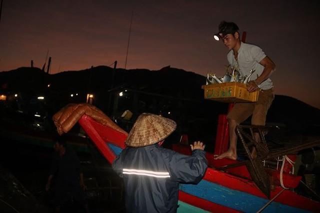 Nhọc nhằn những nữ phu đội cả tấn cá nơi cửa biển - Ảnh 2.