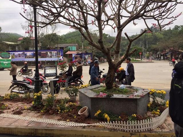 Phản cảm cảnh tranh cướp hoa trang trí ở ga Đồng Đăng - Ảnh 6.