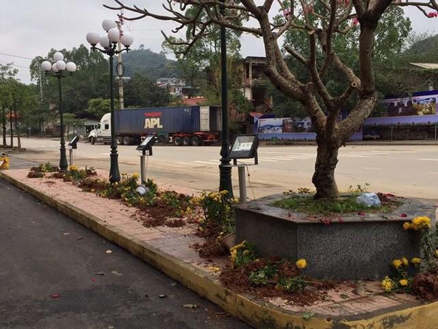Phản cảm cảnh tranh cướp hoa trang trí ở ga Đồng Đăng - Ảnh 7.
