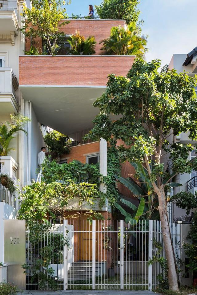 Nhà phố 3 tầng tuyệt đẹp với bể bơi và hàng chục khu vườn ở Sài Gòn - Ảnh 1.