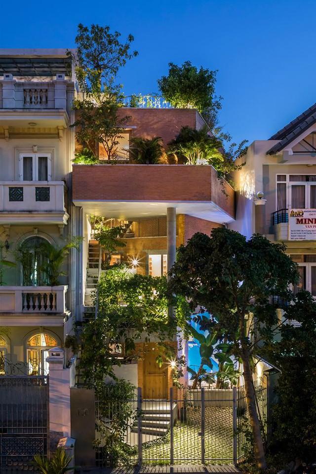 Nhà phố 3 tầng tuyệt đẹp với bể bơi và hàng chục khu vườn ở Sài Gòn - Ảnh 12.