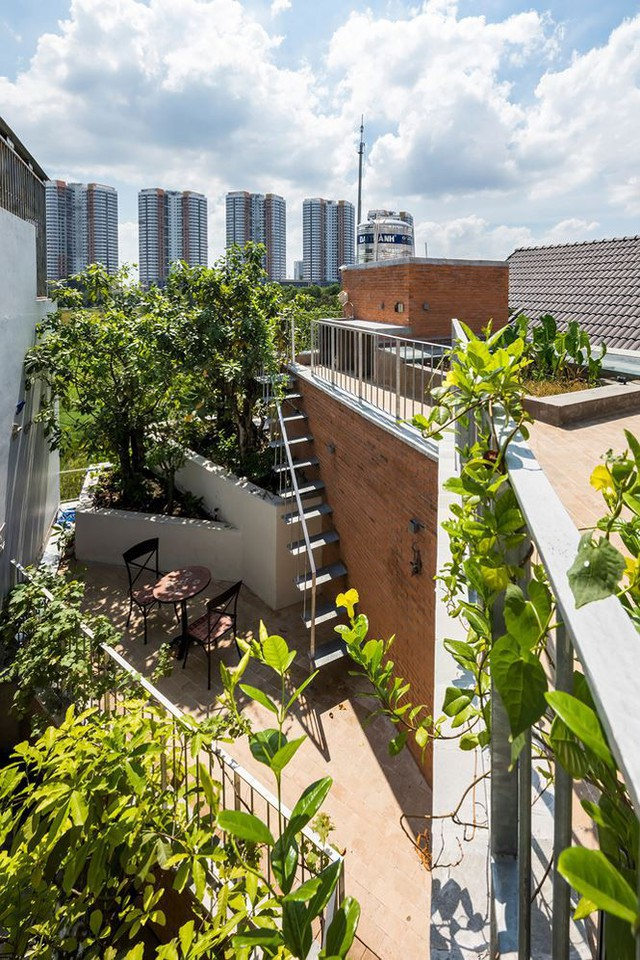 Nhà phố 3 tầng tuyệt đẹp với bể bơi và hàng chục khu vườn ở Sài Gòn - Ảnh 5.