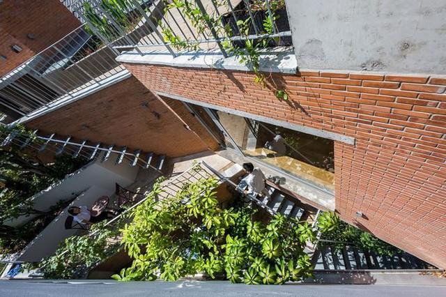 Nhà phố 3 tầng tuyệt đẹp với bể bơi và hàng chục khu vườn ở Sài Gòn - Ảnh 7.