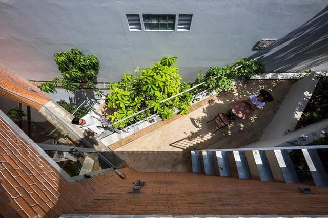 Nhà phố 3 tầng tuyệt đẹp với bể bơi và hàng chục khu vườn ở Sài Gòn - Ảnh 8.