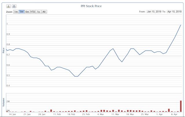 Lỗ thêm 61 tỷ sau kiểm toán, cổ phiếu PPI vẫn tăng trần 5 phiên - Ảnh 1.