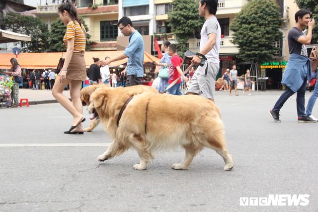 Ảnh: Phố đi bộ Hồ Gươm đặc kín người trong ngày nghỉ lễ giỗ Tổ Hùng Vương - Ảnh 7.