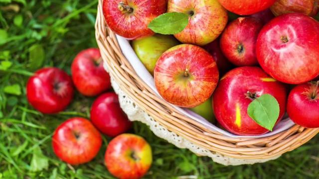 Cơ thể chất chứa quá nhiều độc tố: ăn ngay 7 loại trái cây này để thải bỏ độc tố ra ngoài - Ảnh 2.