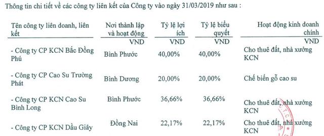 Nhận cổ tức đột biến, Nam Tân Uyên (NTC) báo lãi quý 1 gấp đôi cùng kỳ năm trước - Ảnh 1.