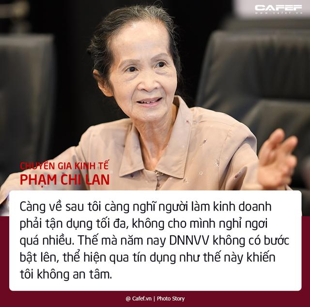 Chuyên gia Phạm Chi Lan bộc bạch những nỗi lo với bức tranh kinh tế tư nhân Việt Nam - Ảnh 2.