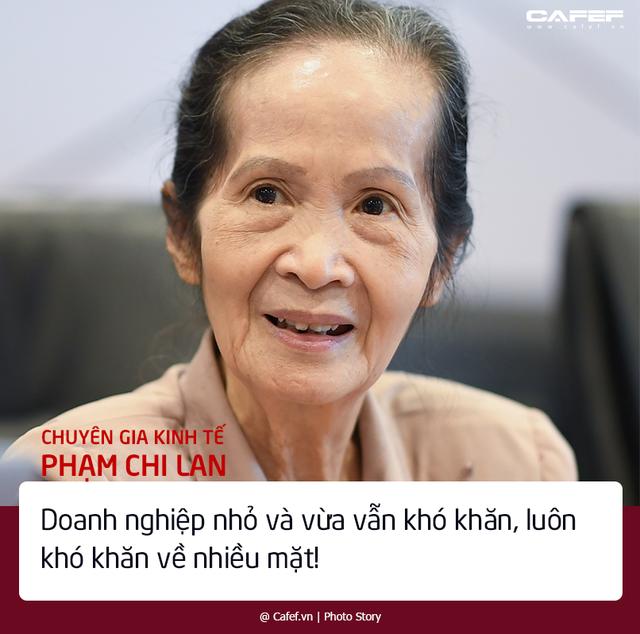Chuyên gia Phạm Chi Lan bộc bạch những nỗi lo với bức tranh kinh tế tư nhân Việt Nam - Ảnh 1.