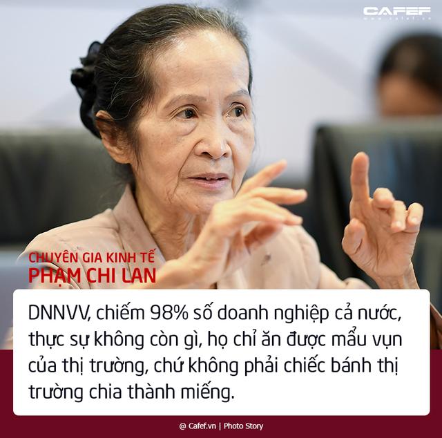 Chuyên gia Phạm Chi Lan bộc bạch những nỗi lo với bức tranh kinh tế tư nhân Việt Nam - Ảnh 4.