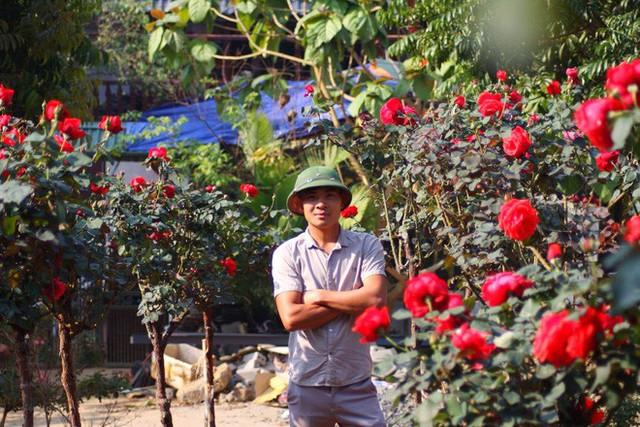 """Bỏ ngân hàng đi trồng hoa, chàng trai gây dựng vườn hồng bạc tỷ """"đẹp vạn người mê"""" - Ảnh 1."""