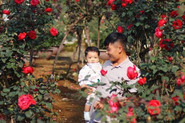 """Bỏ ngân hàng đi trồng hoa, chàng trai gây dựng vườn hồng bạc tỷ """"đẹp vạn người mê"""" - Ảnh 4."""