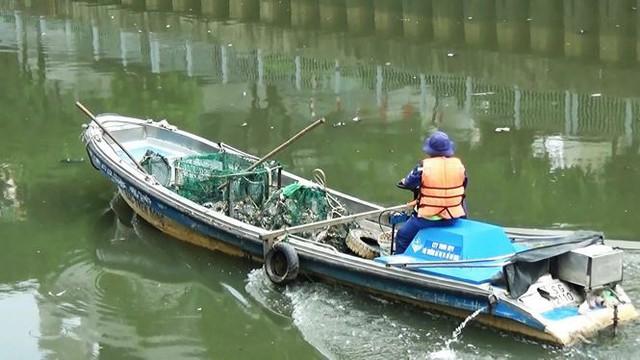 Cá lại chết nổi trắng kênh Nhiêu Lộc - Thị Nghè sau mưa  - Ảnh 5.