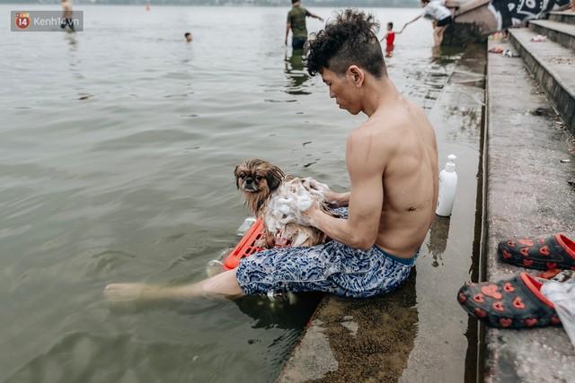 Hà Nội oi nóng ngộp thở, nhiều người mang theo cả thú cưng ra Hồ Tây tắm bất chấp biển cấm - Ảnh 19.
