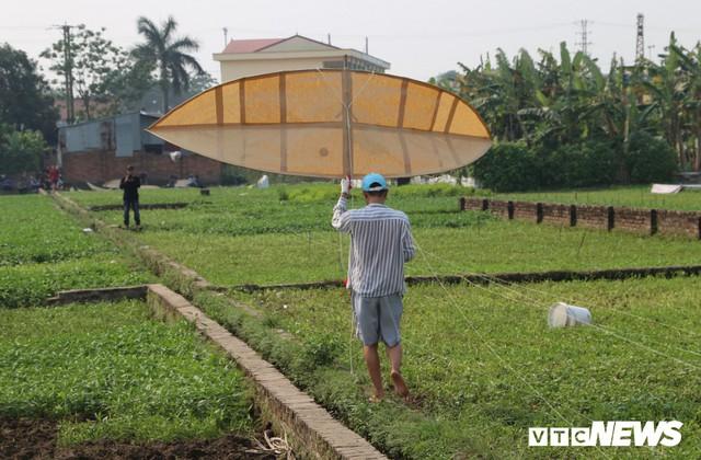 Ảnh: Người Hà Nội hồ hởi thả diều dưới cái nắng 41 độ C trong hội làng Bá Dương Nội - Ảnh 6.
