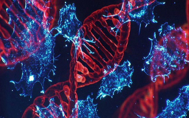 Đây là những trường hợp có nguy cơ mắc bệnh ung thư gan rất cao, số 3 nhiều người mắc phải - Ảnh 2.