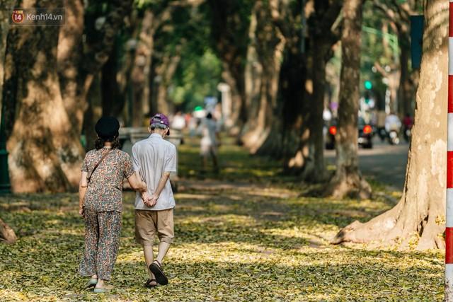 Mùa lá sấu tung bay, người dân kéo tới chụp ảnh ở con đường lãng mạn nhất Thủ đô dù nắng nóng 40 độ C - Ảnh 5.