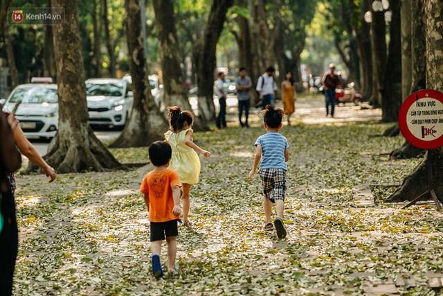 Mùa lá sấu tung bay, người dân kéo tới chụp ảnh ở con đường lãng mạn nhất Thủ đô dù nắng nóng 40 độ C - Ảnh 8.