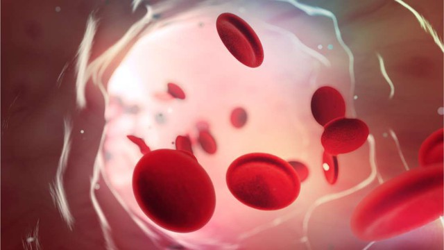 Đây là nhóm máu duy nhất có thể tự động kháng lại căn bệnh giết chết cả triệu người mỗi năm - Ảnh 1.
