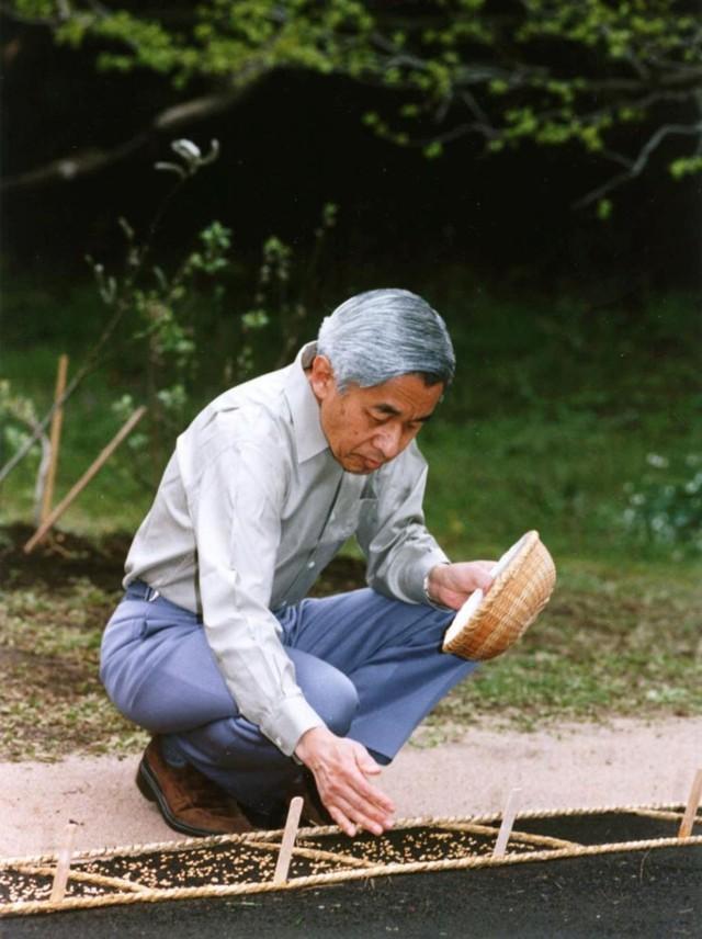Hành trình 85 năm đi cùng nước Nhật của Nhật hoàng Akihito - Ảnh 20.